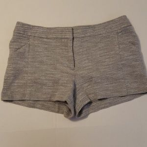 Ann Taylor LOFT | Gray Knit Shorts